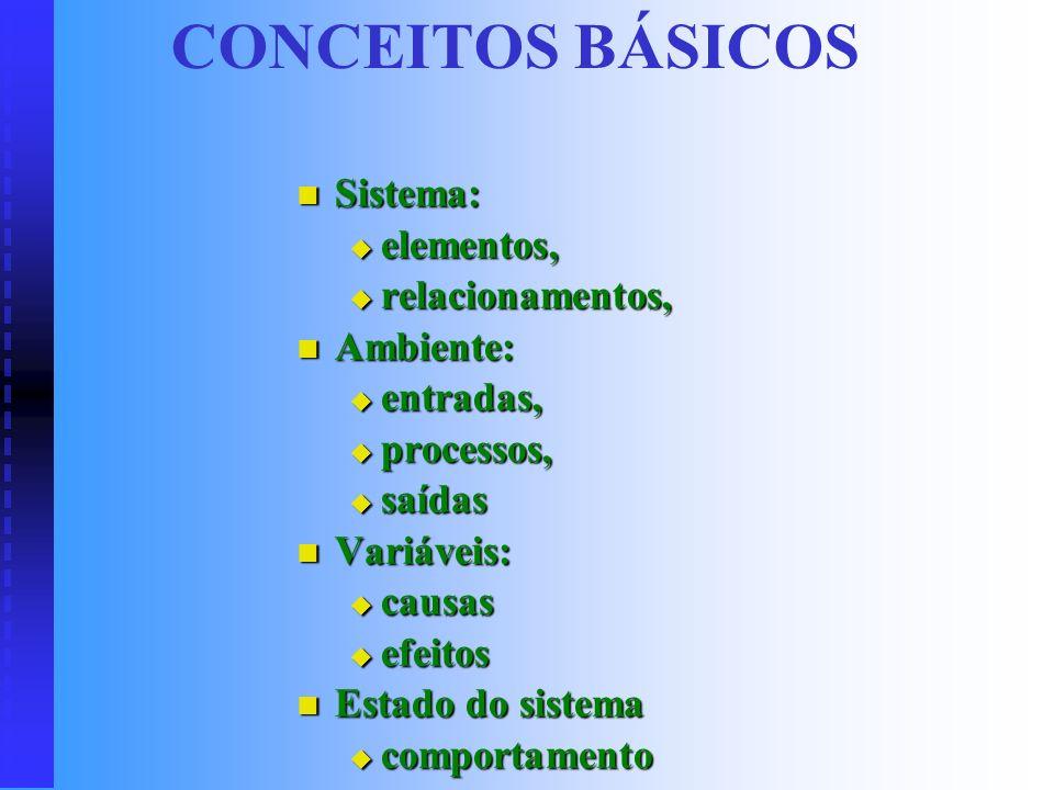 CONCEITOS BÁSICOS Sistema: elementos, relacionamentos, Ambiente: