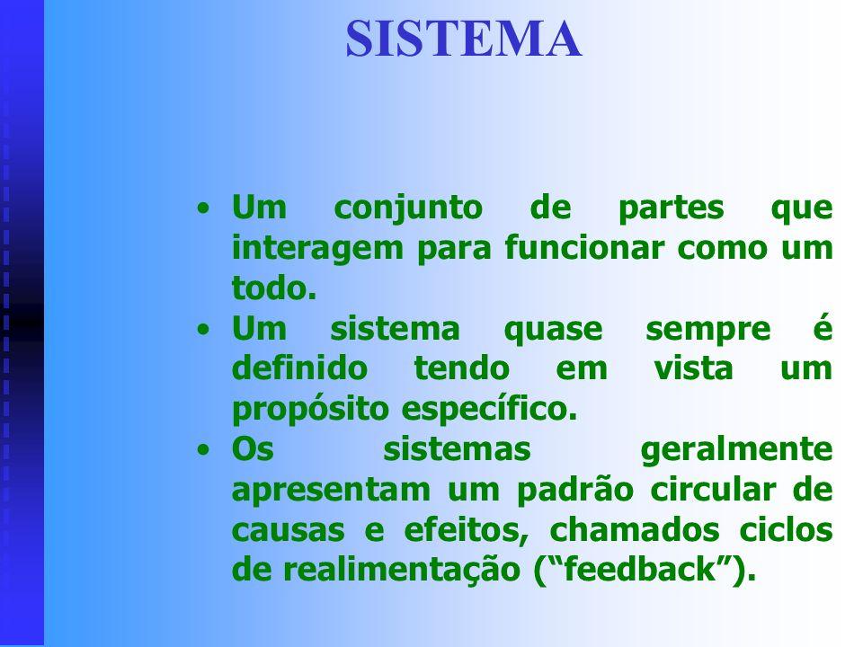 SISTEMA Um conjunto de partes que interagem para funcionar como um todo. Um sistema quase sempre é definido tendo em vista um propósito específico.