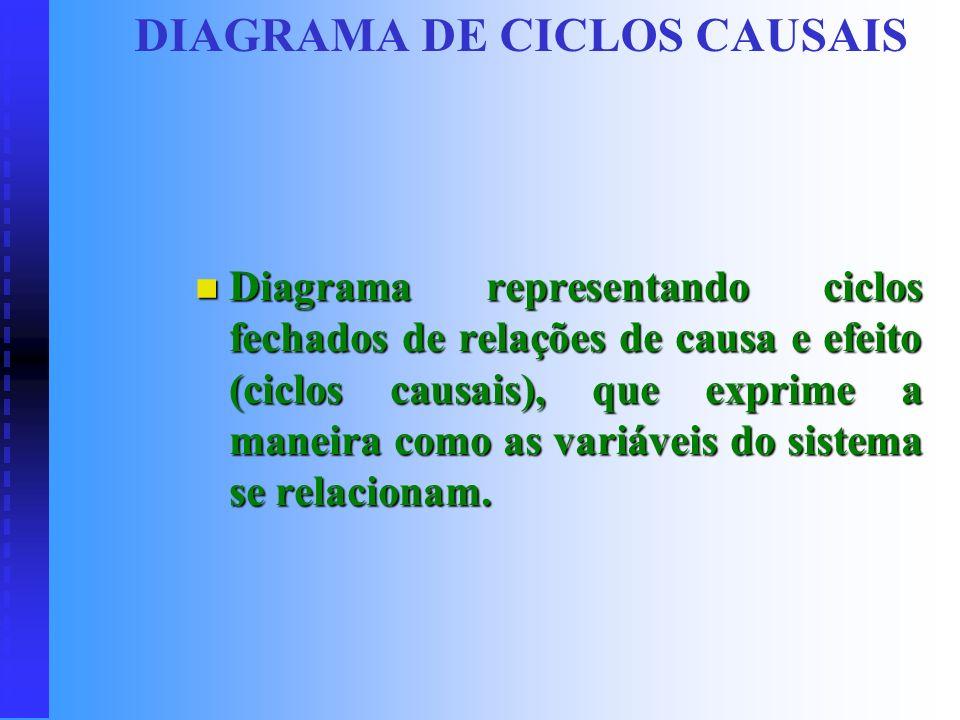 DIAGRAMA DE CICLOS CAUSAIS