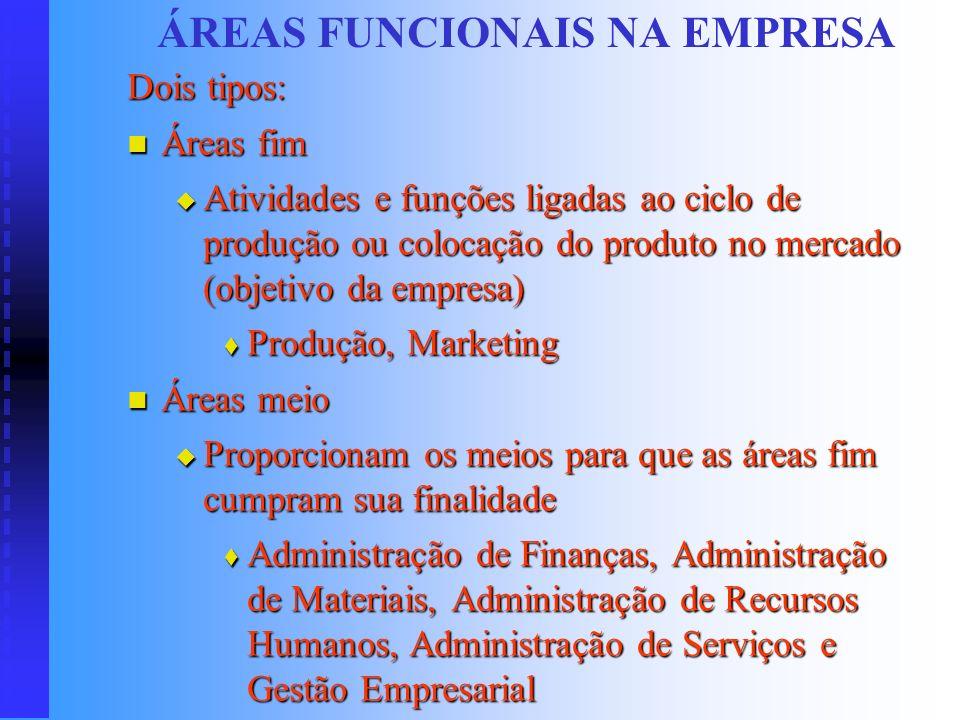 ÁREAS FUNCIONAIS NA EMPRESA