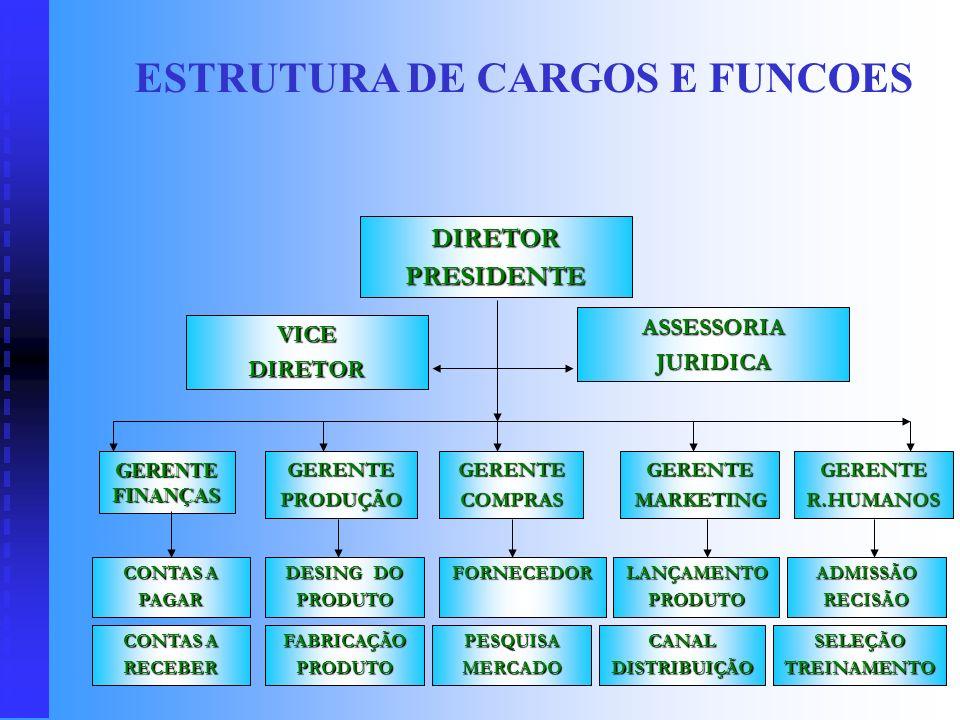 ESTRUTURA DE CARGOS E FUNCOES