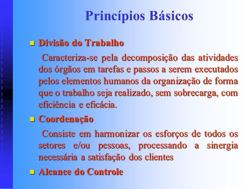 Princípios Básicos Divisão do Trabalho
