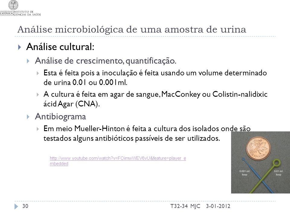 Análise microbiológica de uma amostra de urina