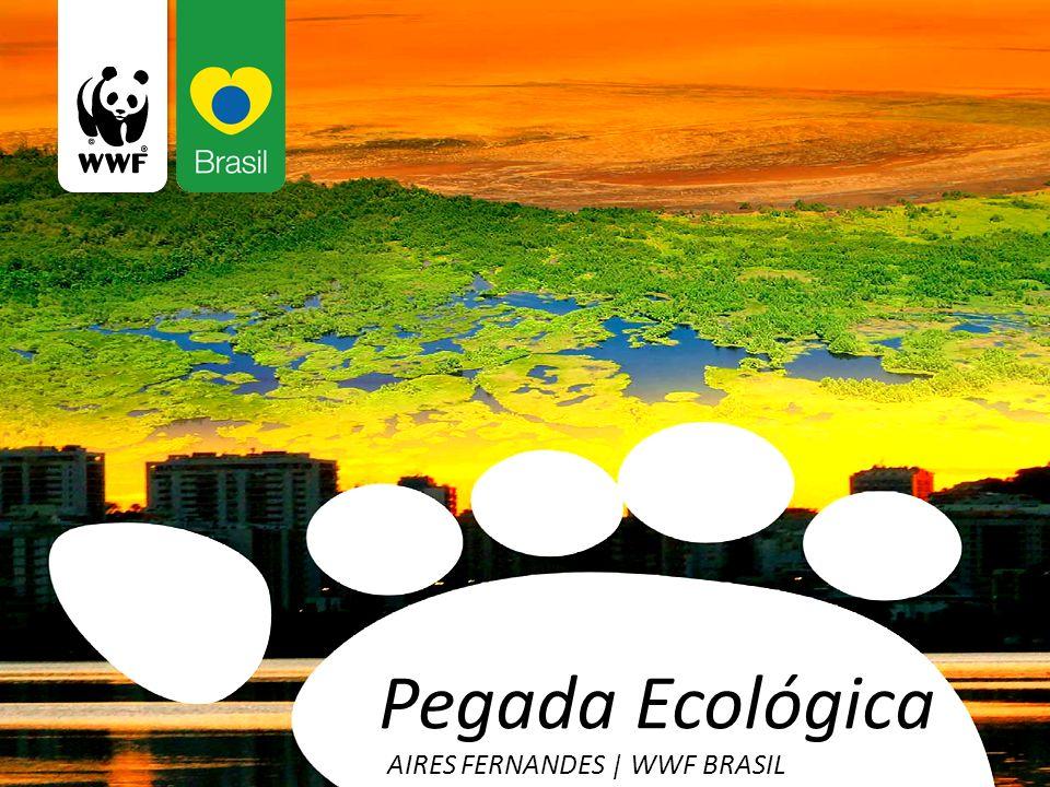 Pegada Ecológica AIRES FERNANDES   WWF BRASIL