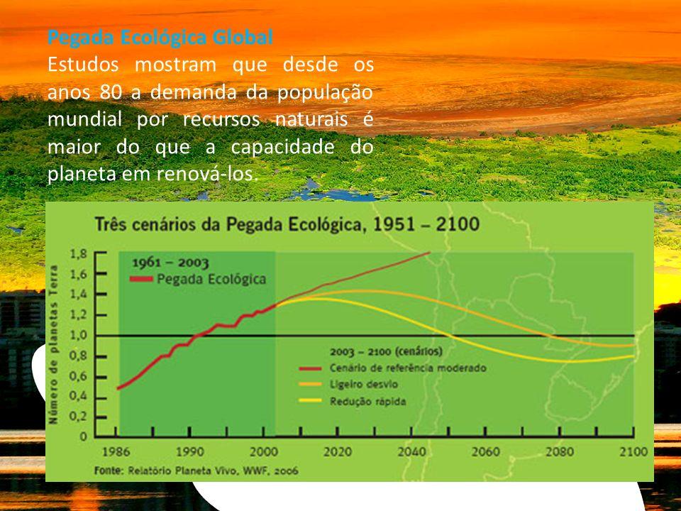 Pegada Ecológica Global