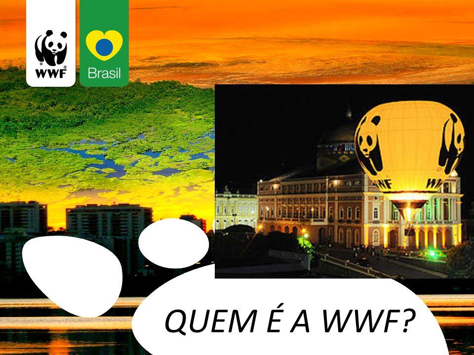 QUEM É A WWF