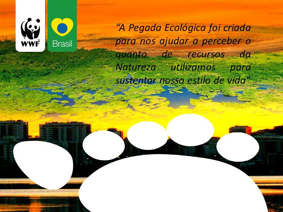 A Pegada Ecológica foi criada para nos ajudar a perceber o quanto de recursos da Natureza utilizamos para sustentar nosso estilo de vida