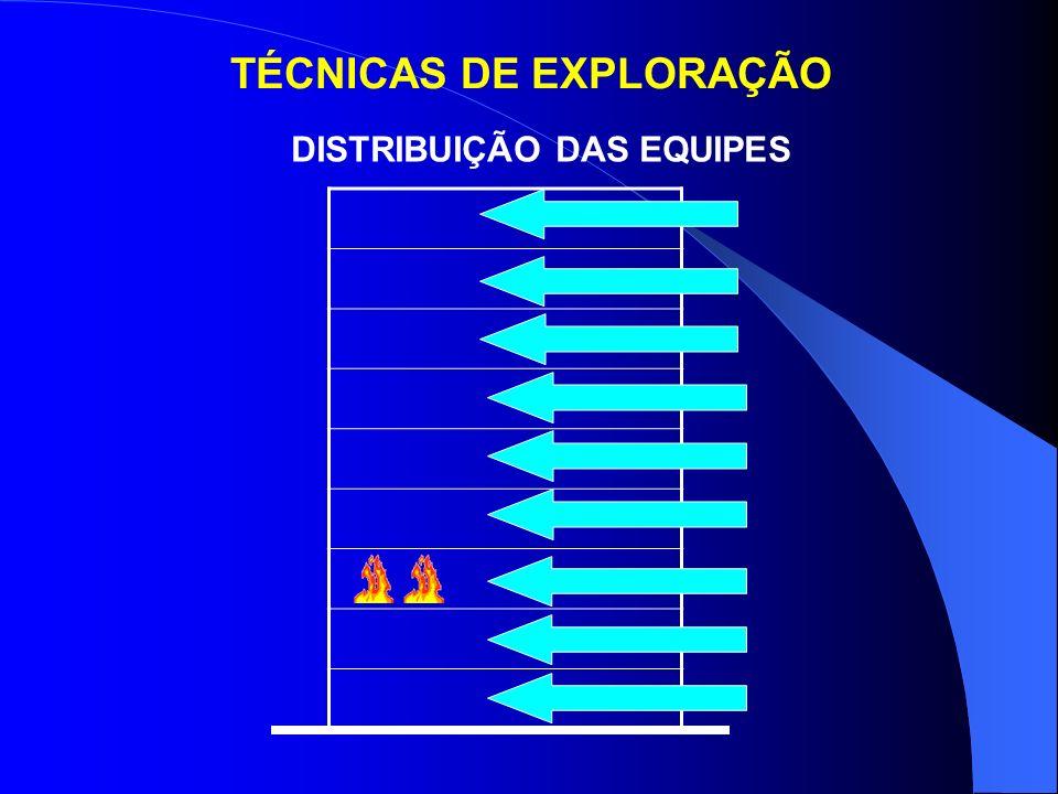 TÉCNICAS DE EXPLORAÇÃO
