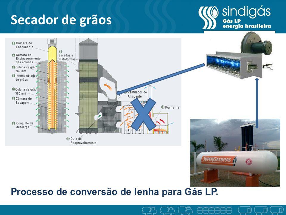 Secador de grãos Processo de conversão de lenha para Gás LP.