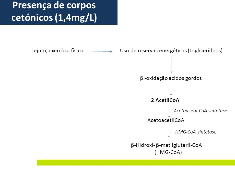 Presença de corpos cetónicos (1,4mg/L)