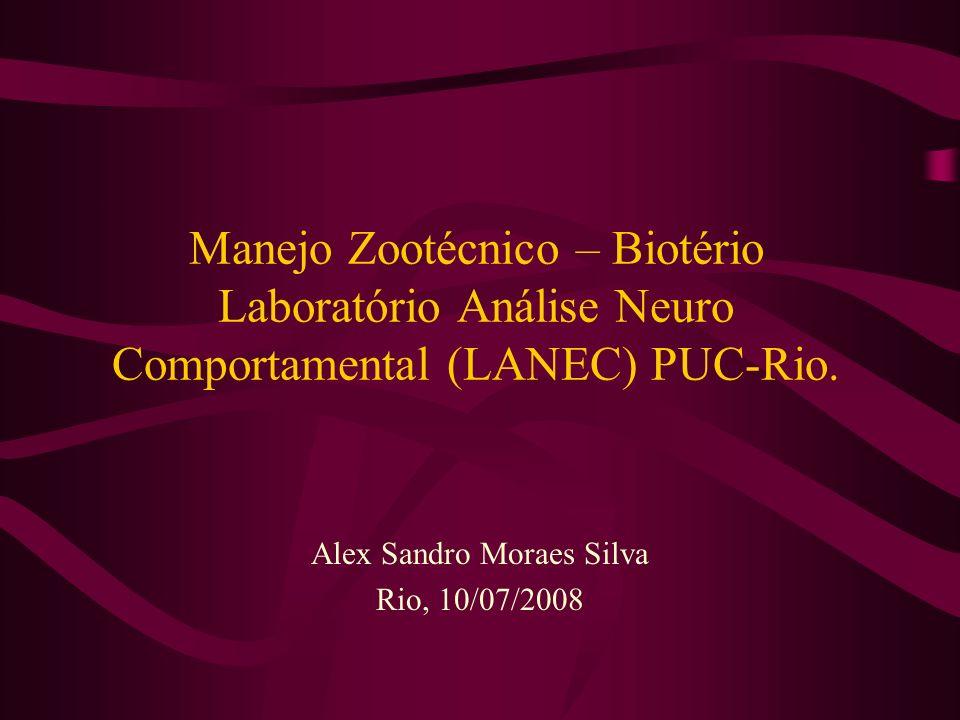 Alex Sandro Moraes Silva Rio, 10/07/2008