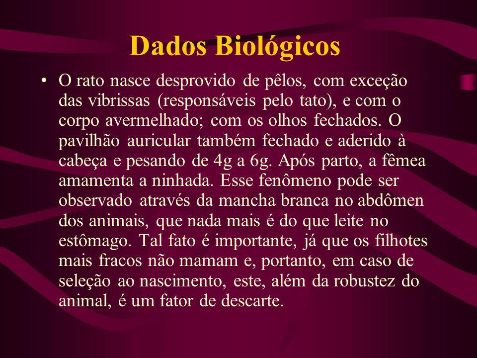 Dados Biológicos