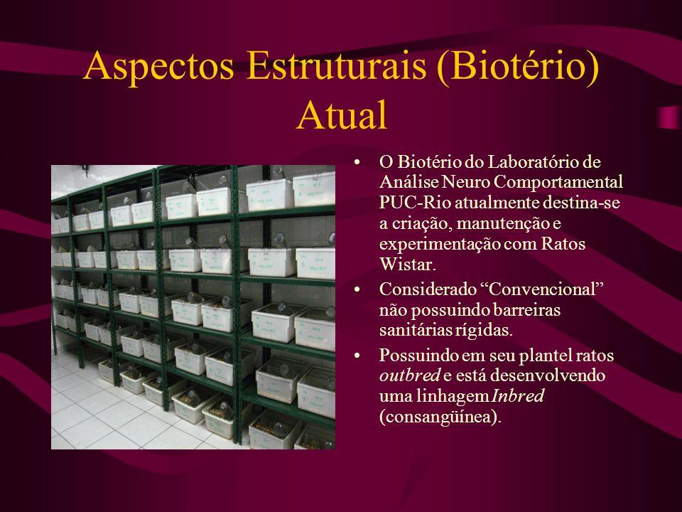 Aspectos Estruturais (Biotério) Atual