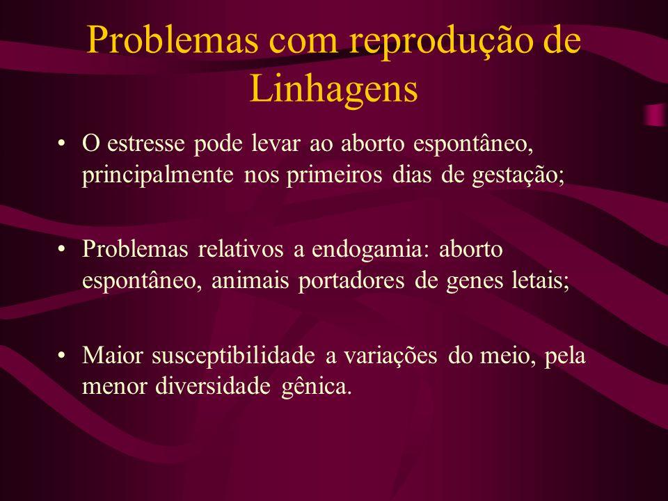 Problemas com reprodução de Linhagens