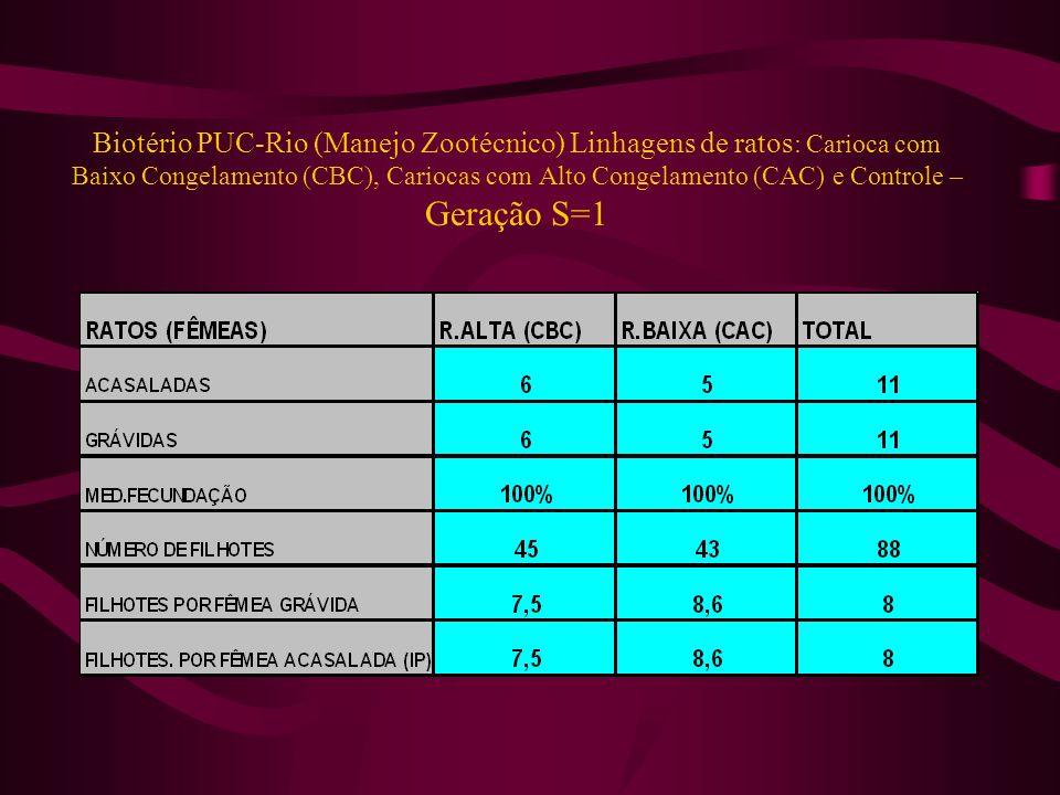 Biotério PUC-Rio (Manejo Zootécnico) Linhagens de ratos: Carioca com Baixo Congelamento (CBC), Cariocas com Alto Congelamento (CAC) e Controle – Geração S=1