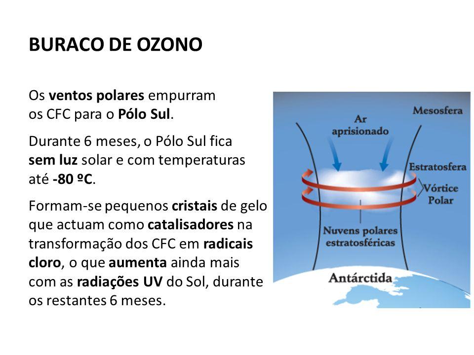BURACO DE OZONO Os ventos polares empurram os CFC para o Pólo Sul.