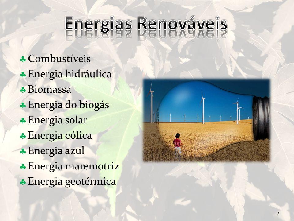 Energias Renováveis Combustíveis Energia hidráulica Biomassa
