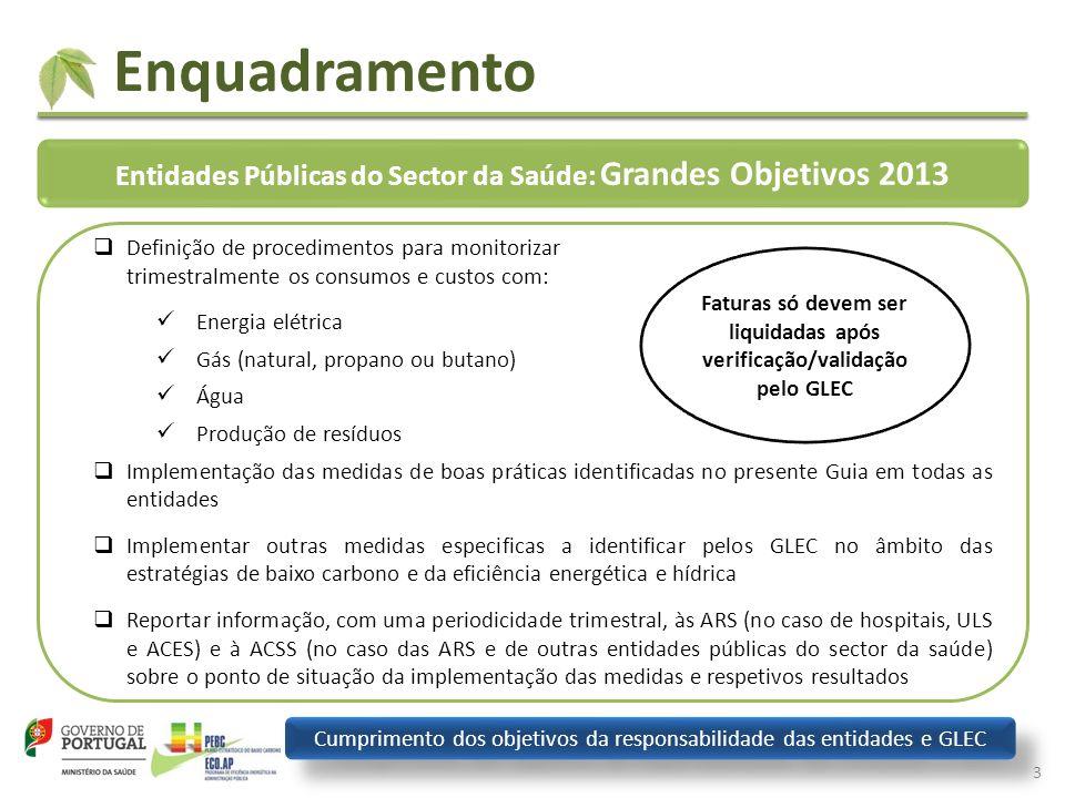 Enquadramento Entidades Públicas do Sector da Saúde: Grandes Objetivos 2013.