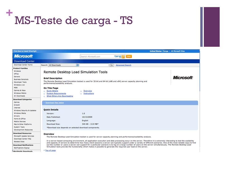 MS-Teste de carga - TS