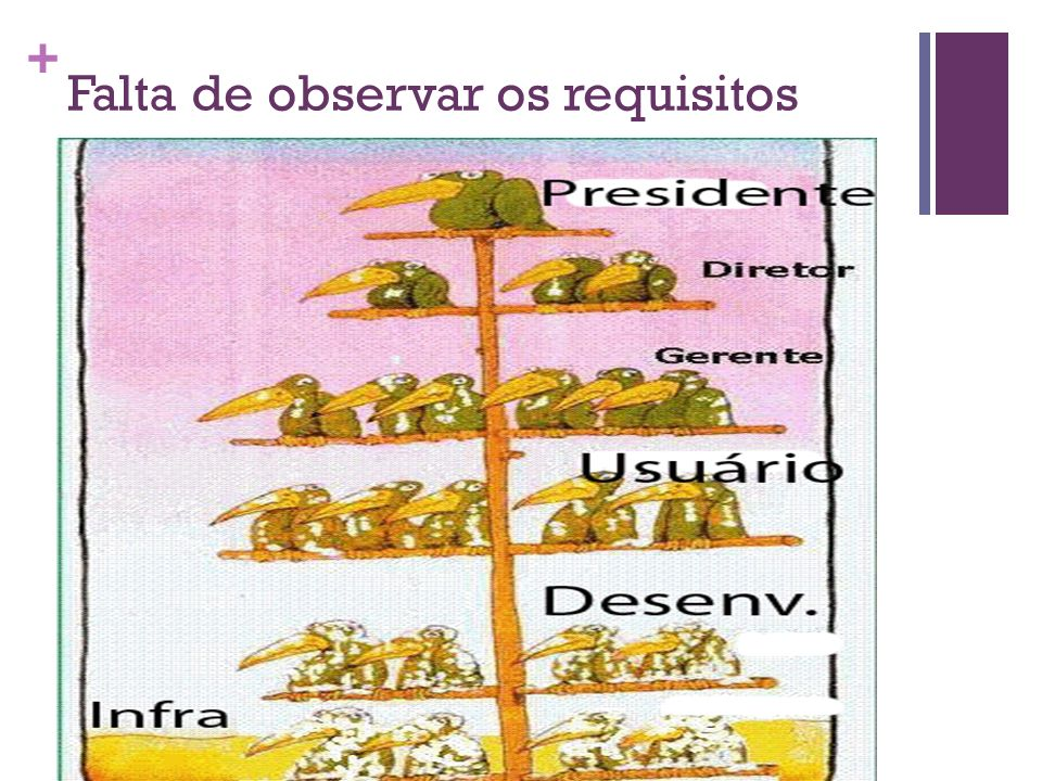 Falta de observar os requisitos