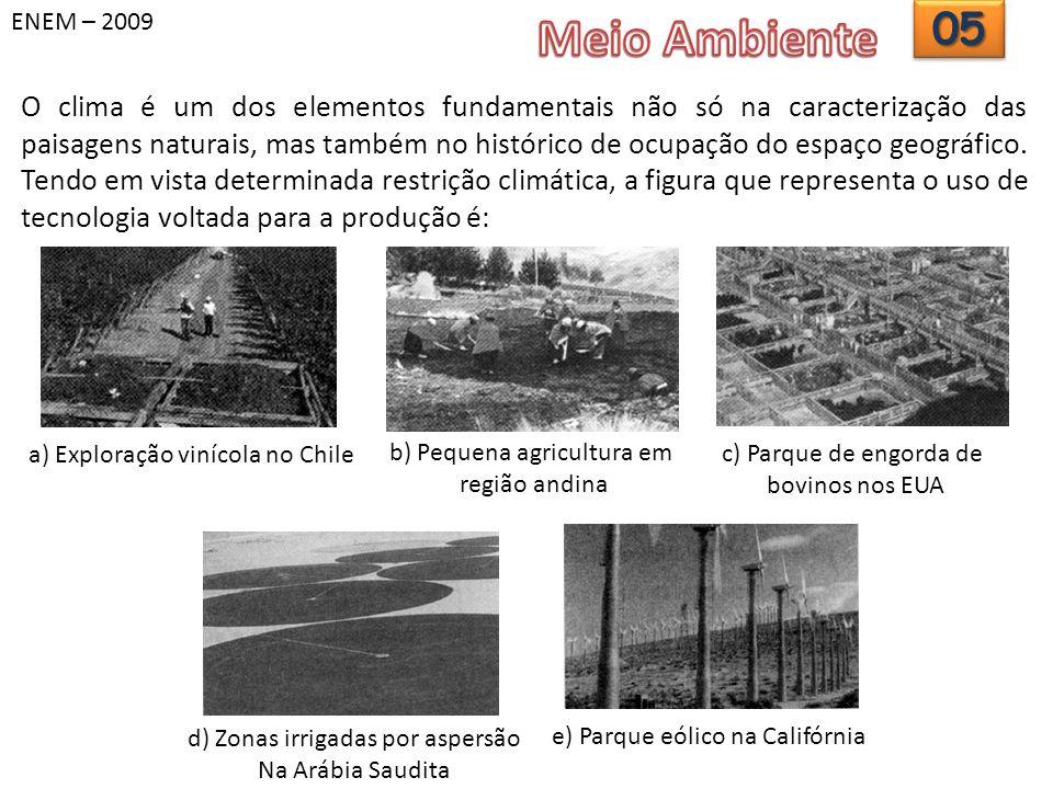 ENEM – 2009 Meio Ambiente. 05.