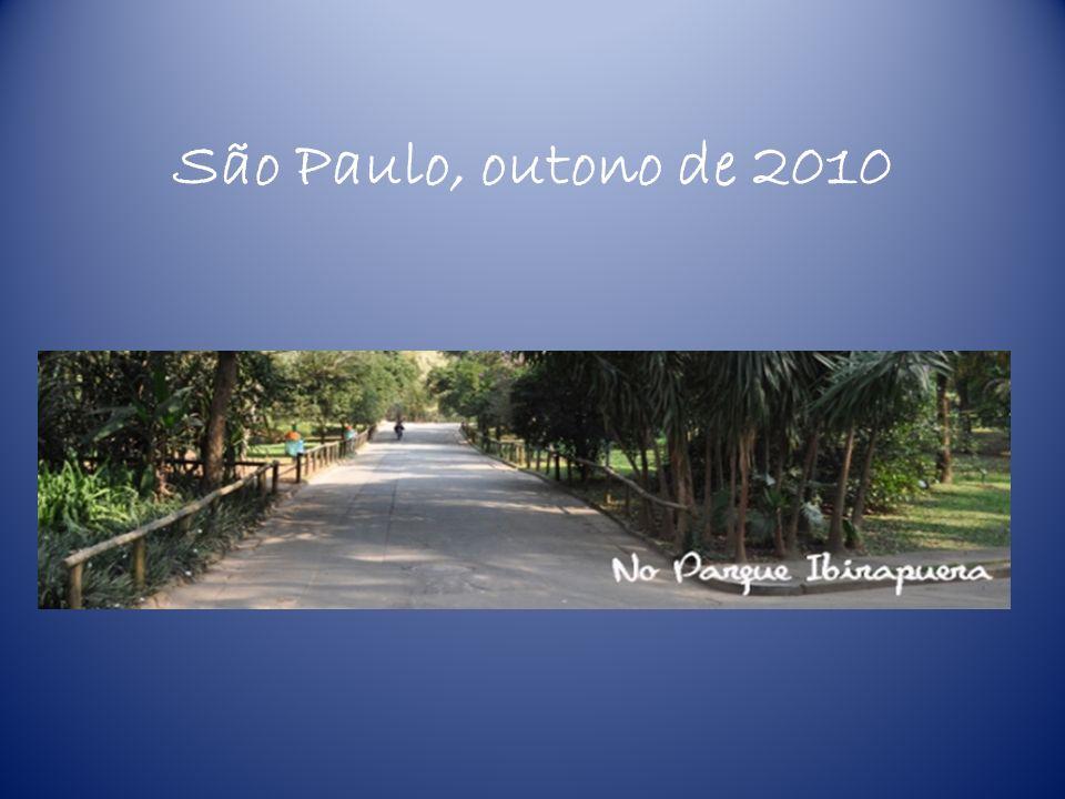 São Paulo, outono de 2010