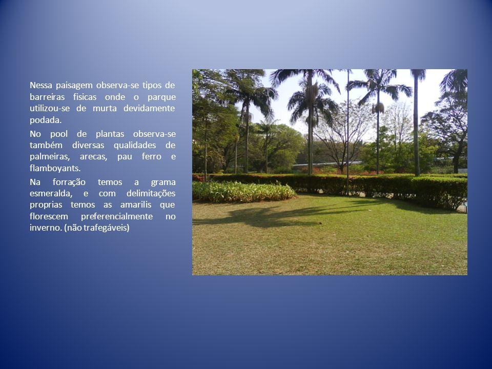 Nessa paisagem observa-se tipos de barreiras fisicas onde o parque utilizou-se de murta devidamente podada.