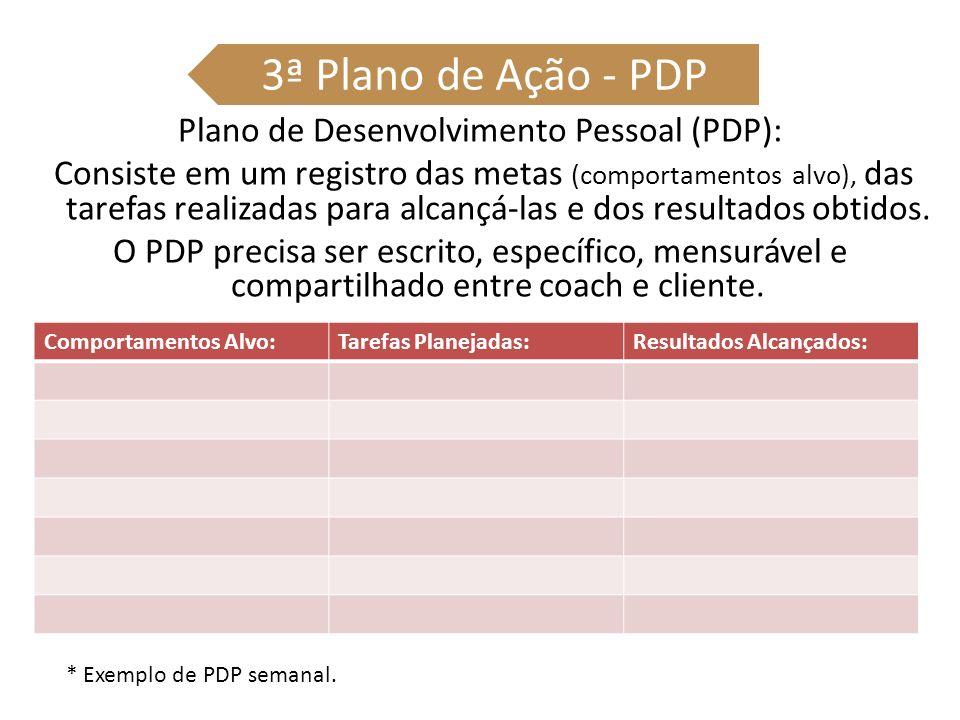 3ª Plano de Ação - PDP