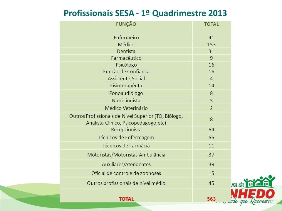Profissionais SESA - 1º Quadrimestre 2013