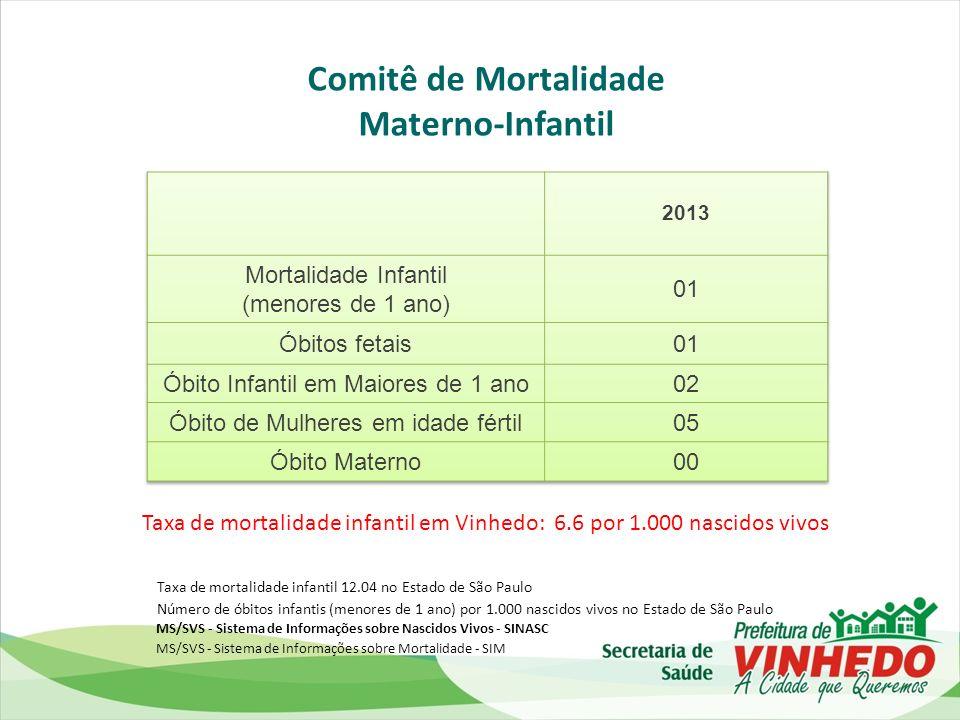 Comitê de Mortalidade Materno-Infantil