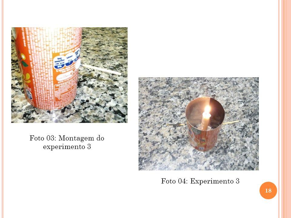 Foto 03: Montagem do experimento 3