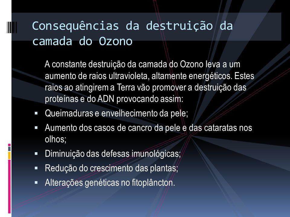 Consequências da destruição da camada do Ozono