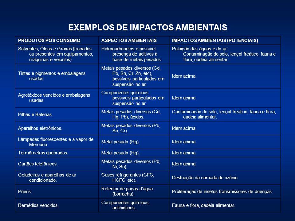 EXEMPLOS DE IMPACTOS AMBIENTAIS