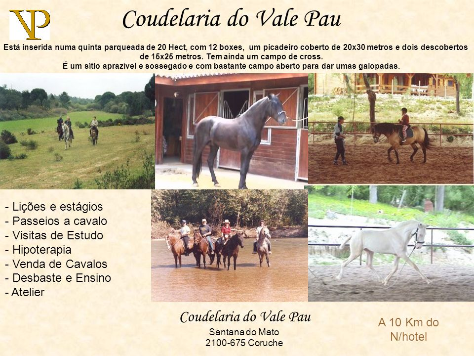 Coudelaria do Vale Pau Santana do Mato 2100-675 Coruche