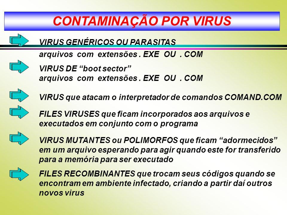 CONTAMINAÇÃO POR VIRUS