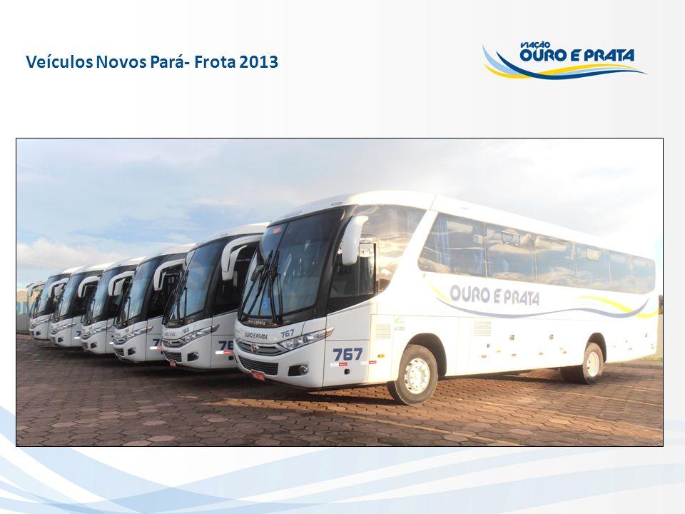 Veículos Novos Pará- Frota 2013