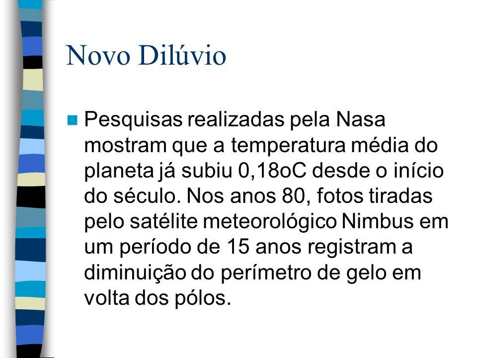 Novo Dilúvio
