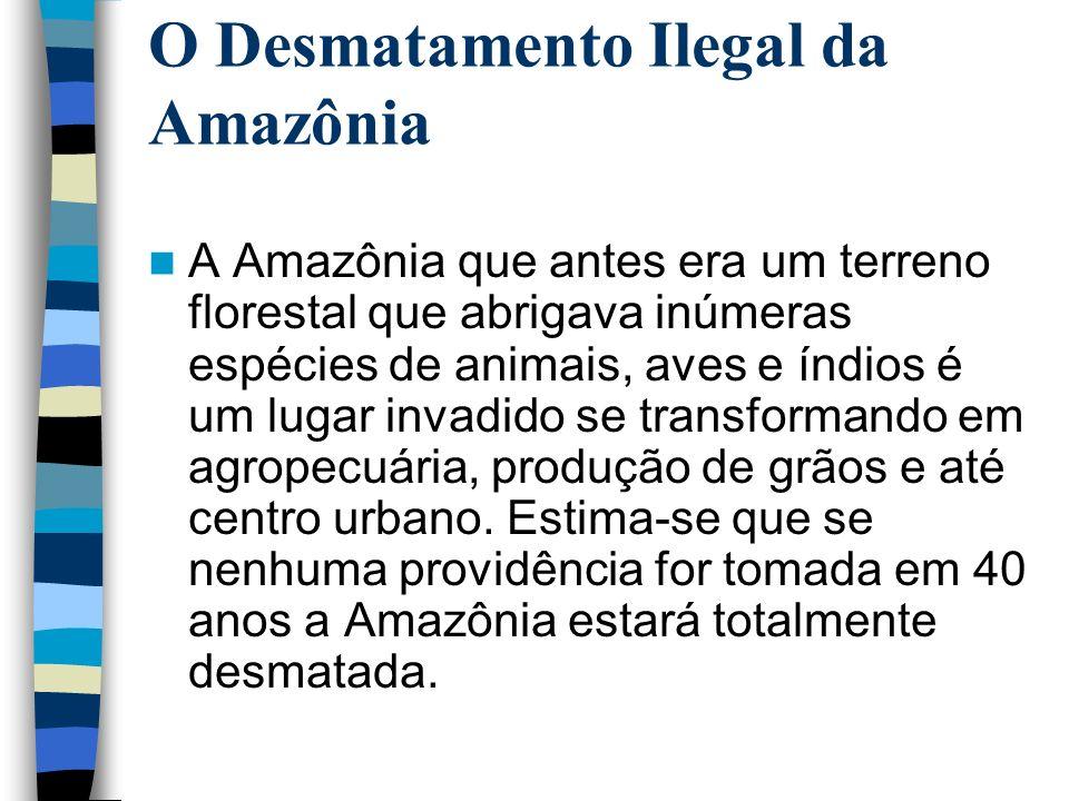 O Desmatamento Ilegal da Amazônia