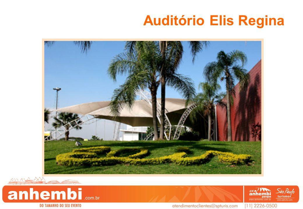 Auditório Elis Regina