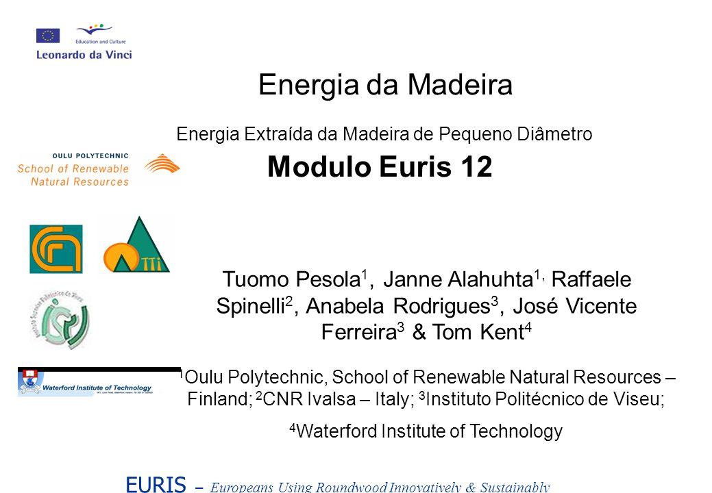 Energia da Madeira Energia Extraída da Madeira de Pequeno Diâmetro Modulo Euris 12