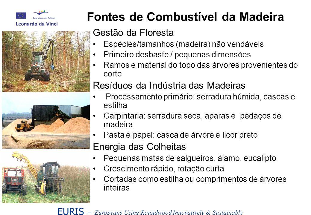 Fontes de Combustível da Madeira