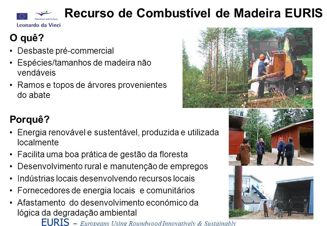 Recurso de Combustível de Madeira EURIS