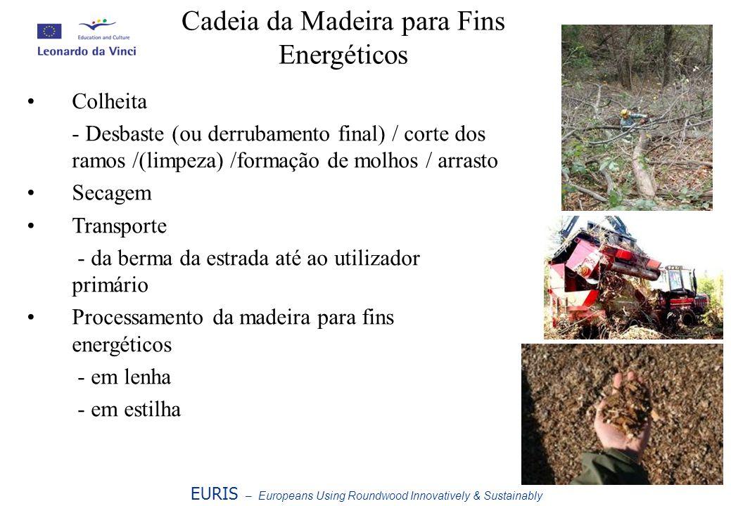 Cadeia da Madeira para Fins Energéticos