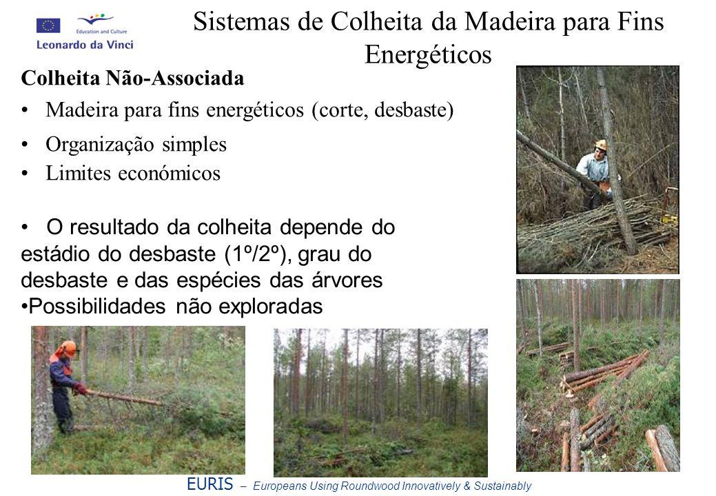 Sistemas de Colheita da Madeira para Fins Energéticos