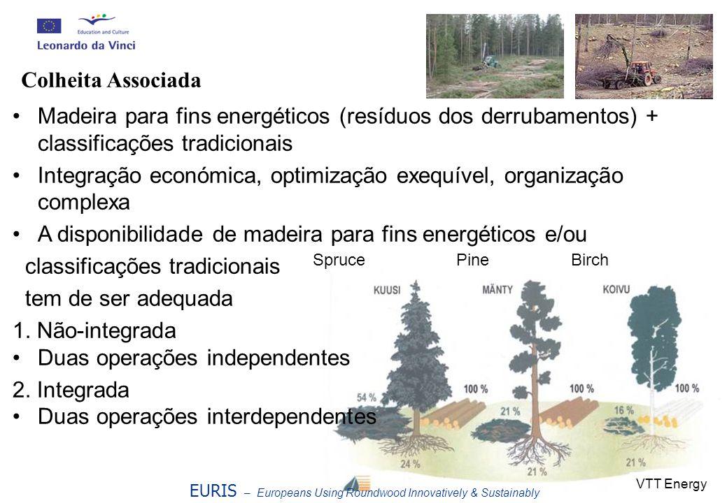 Integração económica, optimização exequível, organização complexa