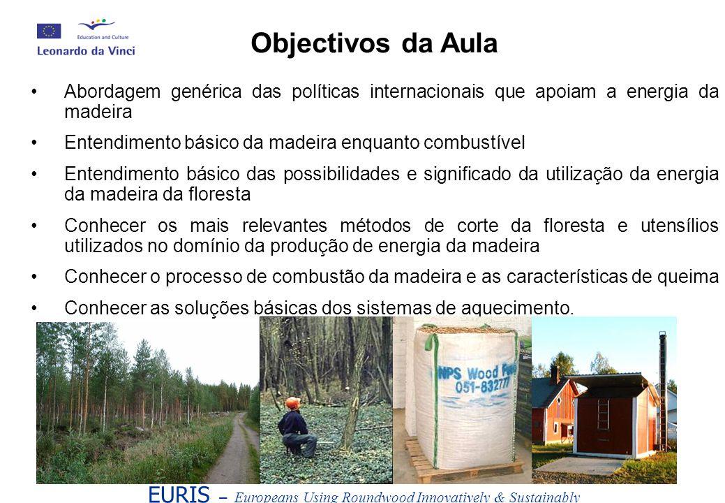 Objectivos da Aula Abordagem genérica das políticas internacionais que apoiam a energia da madeira.