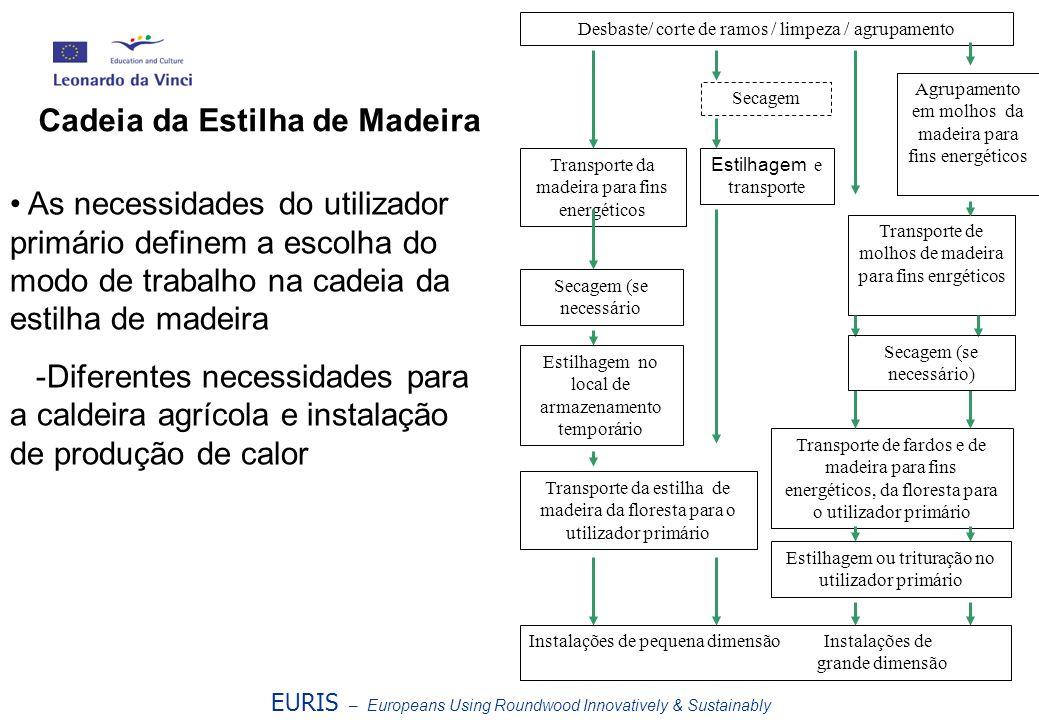 Cadeia da Estilha de Madeira