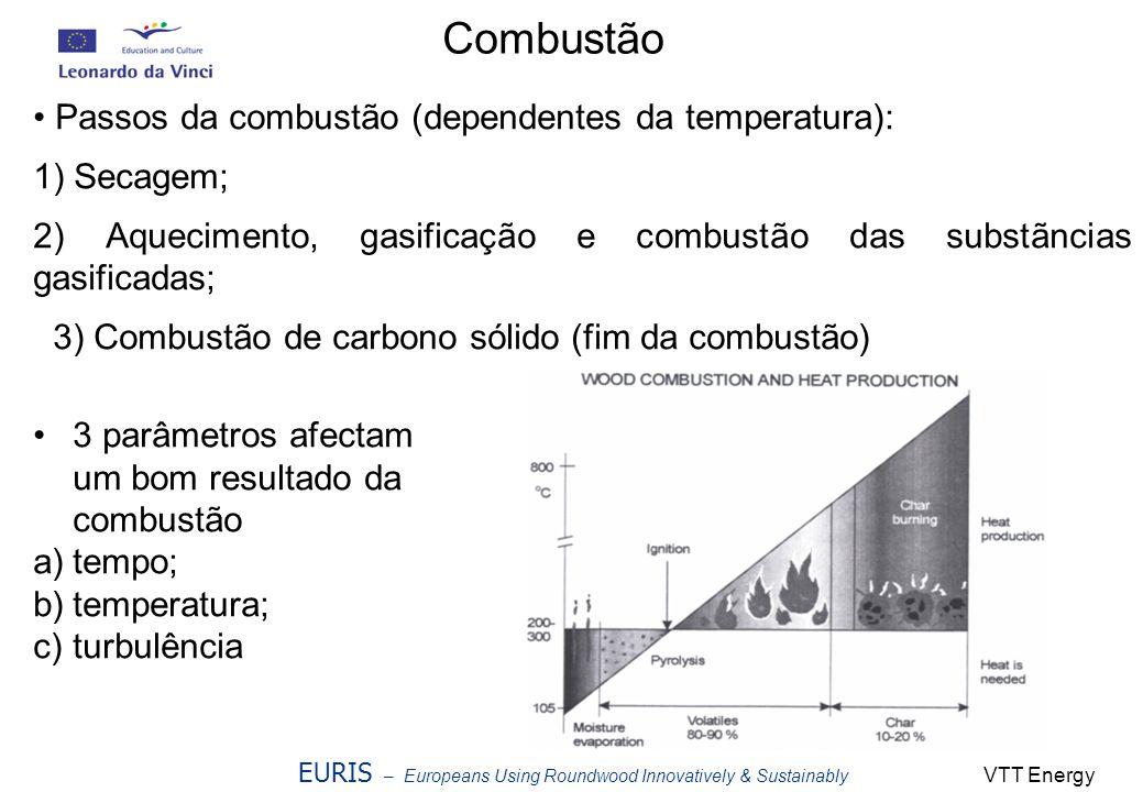 Combustão Passos da combustão (dependentes da temperatura):