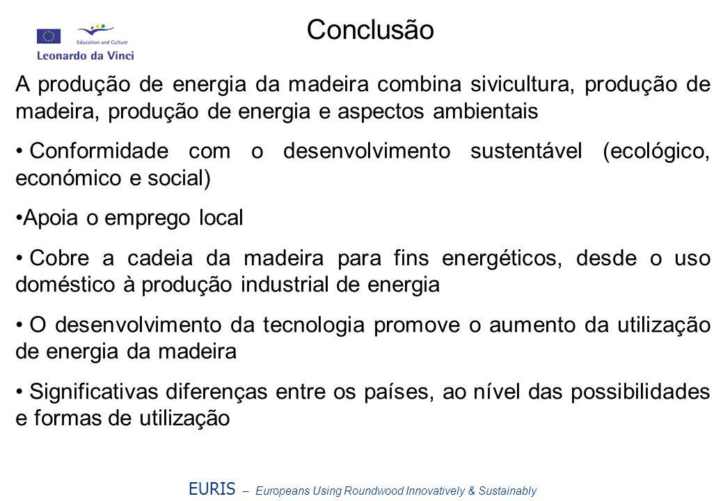 Conclusão A produção de energia da madeira combina sivicultura, produção de madeira, produção de energia e aspectos ambientais.