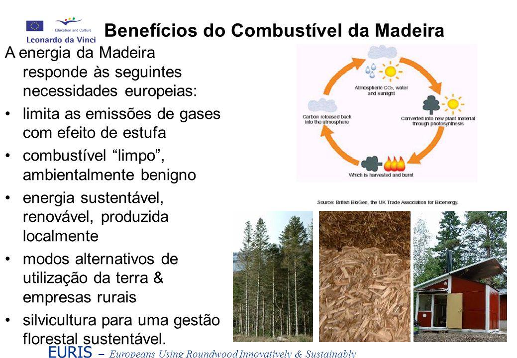 Benefícios do Combustível da Madeira